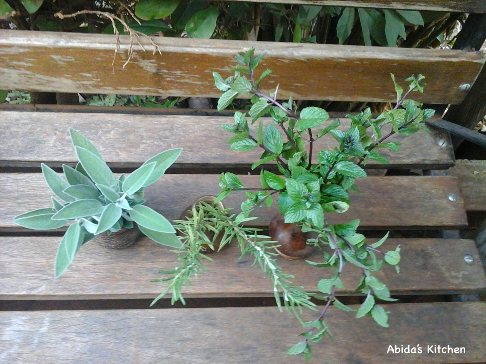 The glorious herbs that graced my two pizza's with their presence!
