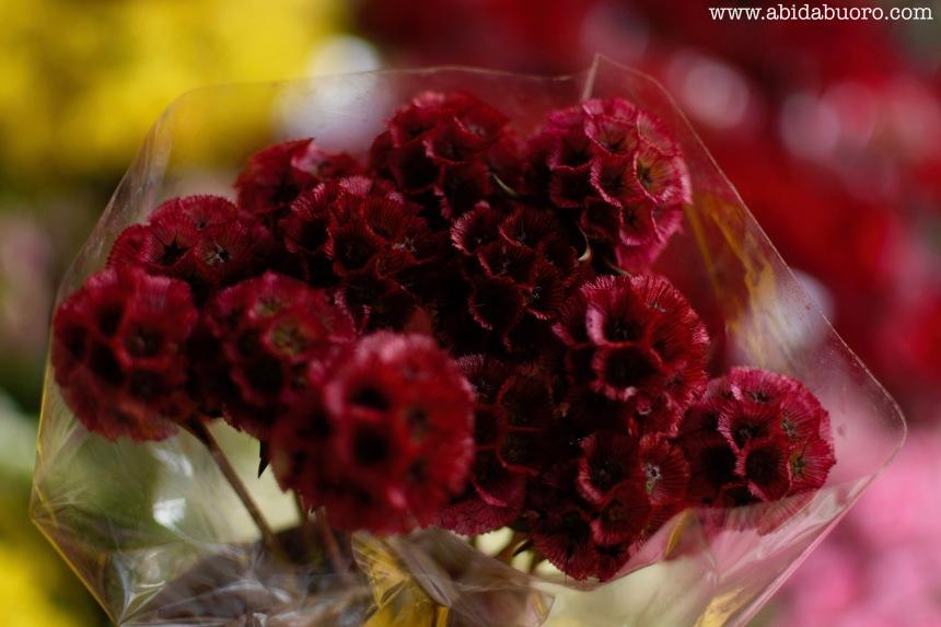Rose's flower stall 5.jpg